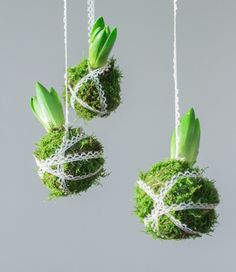 Spring decoration ideas with natural materials - shapes with moss-Frühlingsdeko Ideen mit Naturmaterialien- Gestalten mit Moos decorate with moss spring decoration natural materials design spring flowers with moss - Christmas Flowers, Christmas Time, Christmas Crafts, Christmas Decorations, Holiday, Art Floral Noel, Spring Decoration, Navidad Diy, Deco Floral