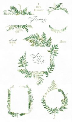 Fern Land. Watercolor Collection - Illustrations - 3
