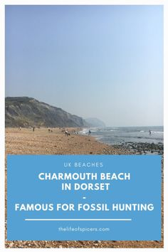 Visit Charmouth Beach in Dorset for a great dog friendly beach, popular for fossil hunting, amazing views and walks along the Jurassic Coast Dorset Beaches, Uk Beaches, Travel Tips For Europe, Best Places To Travel, Travel Ideas, Lulworth Cove, South West Coast Path, Fossil Hunting