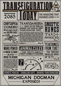 Fantastic-Beasts-Movie-Transfiguration-Refrigerator-Magnet-Harry-Potter-UNUSED