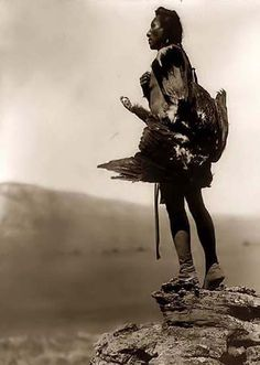 A majestic photo of an Indian Eagle Catcher. It was made in 1908 by Edward S. Curtis.    The illustration documents a Hidatsa Indian standing on large rock overlooking valley. He is holding an eagle that he has caught.
