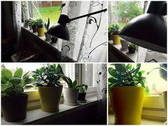 Onni on matka - ei määränpää Planter Pots, Home, Ad Home, Homes, Haus, Houses