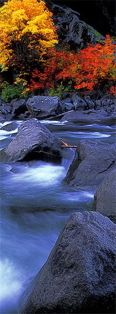 The Entiat River in the Wenatchee National Forest of eastern Washington ~ by John Shephard