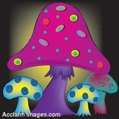 153 Best Psychedelic Mushrooms Images In 2013 Stuffed