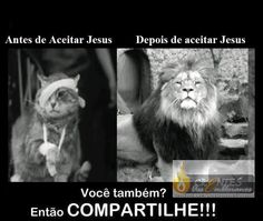 Php, Facebook, Animals, Lord, Messages, Gatos, Animales, Animaux, Animal