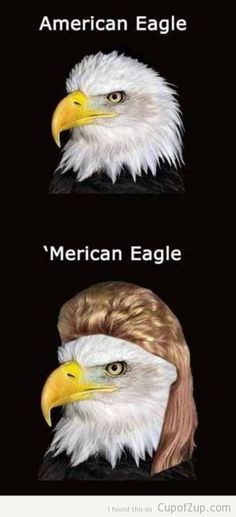 "I don't think some of these people realize we're making fun of them when we say ""Merica/Murica"".  8