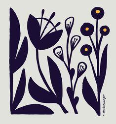 fChristopher Delorenzo - Flower Studies, Illustration