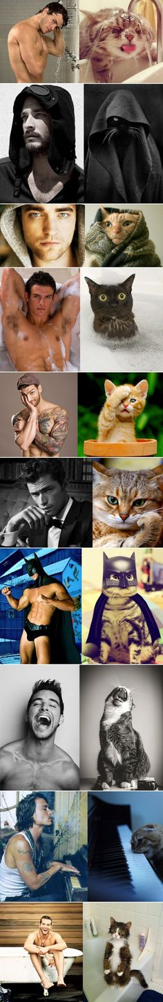 Cats Male Models 2. You must love these pic.