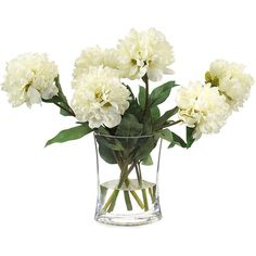 John-Richard Heavenly Peonies Botanical ($251) ❤ liked on Polyvore featuring home, home decor, floral decor, flowers, plants, fillers, backgrounds, john-richard, white home decor and flower home decor
