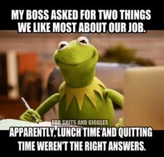 Ok how about morning tea toilet break and afternoon tea toilet break so I don't have to look at you. Funny Kermit Memes, Haha Funny, Funny Jokes, Funny Shit, Funny Stuff, Funny Things, Memes Humor, Funny Sarcasm, Funny Work