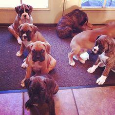 Ok boys, line up!  Boys on da left & girls on da right cuz girlies are always right!