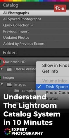 Understand The Lightroom Catalog System in 10 Minutes » ExpertPhotography #lightroom #photography