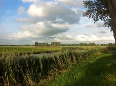 simply the lowlands of Holland