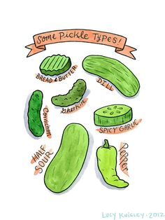 Crave This - Lucy Knisley illustration : Some Pickle Types Watercolor Print, Watercolor Illustration, Christmas Pickle, Cooking Icon, Pickels, Bff Tattoos, Bullet Journal Art, Rock Crafts, Food Illustrations