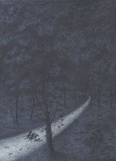 Angela Barrett's illustration from Sylvie and the Songman... this depicts the secret night highway for animals 'Travelling at fantastic speed'. It would be fun if this was real.  Character losses the ability to hear.