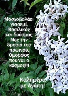 Good Morning Images Flowers, Good Morning Picture, Morning Pictures, Good Morning Messages Friends, Greek Memes, Mom And Dad, Spirituality, Stay Safe, History