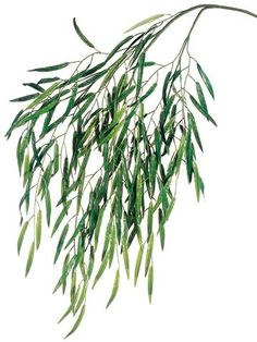 Two Tone Green Artificial Weeping Willow Spray