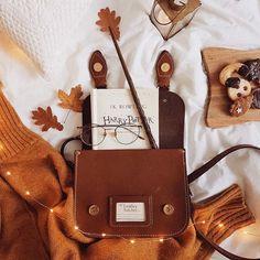 Halloween Gifts, Fall Halloween, Halloween Decorations, Autumn Cozy, Fall Winter, Autumn Aesthetic, Best Seasons, Fall Pictures, Autumn Inspiration