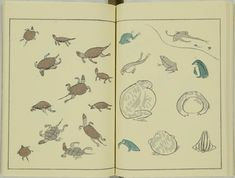 kitao-masayoshi-illustrated-animals (9)