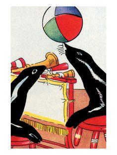 Performing Circus Seals Premium Poster