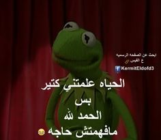 Funny Cartoon Quotes, Some Funny Jokes, Cartoon Art, Arabic Jokes, Funny Arabic Quotes, Kermit, Just Smile, Green Man, Disney Wallpaper