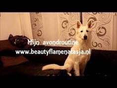 Mijn avondroutine november 2013 - www.beautyflamenatasja.nl #beauty #blog #blogger #beautyblogger #beautyflamenatasja #blogpost #content #artikel #vid #video #avondroutine #routine