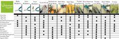What pliers should I use? UnkamenBlogs   Unkamen Supplies.com #jewelry-making