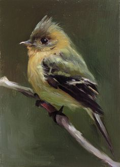 Tufted Flycatcher Open Edition Print of Original oil от FinchArts, $20,00