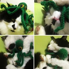 I Crocheted An Octopus And Tried To Annoy My Cat With It. It Didn't Work