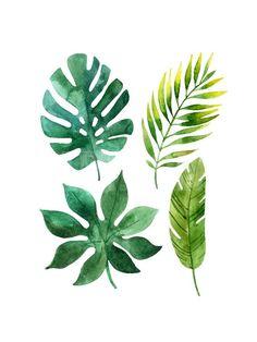 Tropical Leaves Art Print by tanycya at Art.com