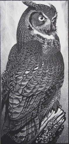 Черно-белый эскиз совы