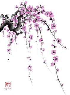 Weeping Plum by Shirley Isojima