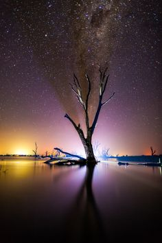 Magical picture by our Light Art Ambassador, Denis Smith. #lightart # photography #ledlenserthelight