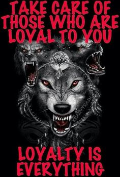 Ty But the cockroaches are fucking everywhere. Clear out the bugs, shit will run smooth. But mofos wanna keep cockroaches around. Wolf Qoutes, Lone Wolf Quotes, Citation Combat, Of Wolf And Man, Wolf Images, Wolf Spirit Animal, Wolf Stuff, Wolf Love, Warrior Quotes