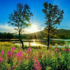 Beautiful World, Beautiful Images, Mountain Wallpaper, Wild Flowers, Natural Beauty, Grass, Sunrise, Colours, River