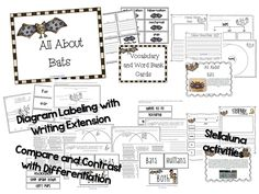 All kinds of bat activities! Including Stellaluna and literacy centers!