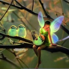 I want to pet a glowing birdie!