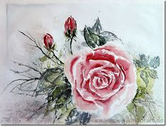Florales - Malerei in Aquarell und Acryl