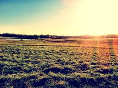 Taken at Shelby Farms by Louie Giglio.