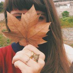Folhas de outono no chão e um anel de Raposa na mão❤️ #lojaamei #anel #outono #diafrio #muitoamor