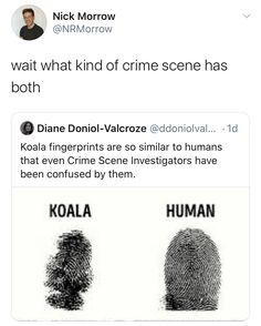 Funny Posts