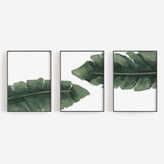 Tropical Palm Leaves Banana Leaf Print Set of Three Triptych Print or Canvas Set Leaf Prints, Canvas Art Prints, Tropical Nursery, Triptych Art, Nursery Paintings, Beach Print, Canvas Designs, Leaf Art, Vibrant Colors