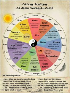 A very closely related chart to the Ayurvedic morning. Has times for best efficiency and work for even studying and exercise and even sex.