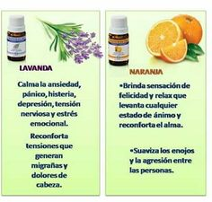 Productos naturales gijòn Young Living, Doterra, Just In Case, Healthy Living, Essential Oils, Tropical, Lavender Essential Oils, Herbal Medicine, Medicine