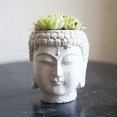 Matera Buda
