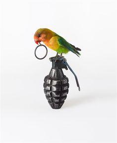 Nancy Fouts Lovebird on Grenade