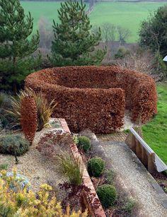 Circular Hedge