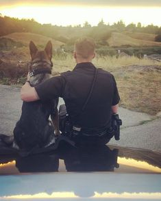 Thank you both for your service!🙏 Follow K9 Odin👉@k9_.odin #germanshepherds#germanshepherdmemes#germanshepherdphotos#germanshepherddog #gsdstagram#germanshepherdpictures#gsd#gsdphotos #gsdpictures #germanshepherdpuppy #germanshepherdpuppies German Shepherd, German Shepherds, german shepherd community German Shepherd dog, german shepherd memes, german shepherd photos, gsdstagram, german shepherd pictures, gsd, gsdphotos, gsd pictures  German Shepherd Memes, German Shepherd Pictures, German Shepherd Puppies, German Shepherds, Thank You Both, Puppy Training Tips, Bradley Mountain, Dog Cat, Take That