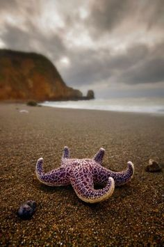 Rockaway Beach, Pacifica, California