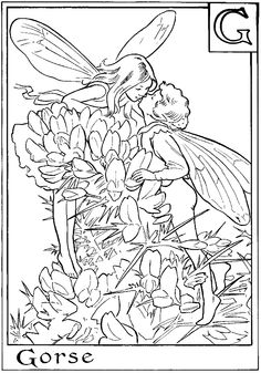 Les 214 meilleures images du tableau Fairies - Coloring pages sur ...